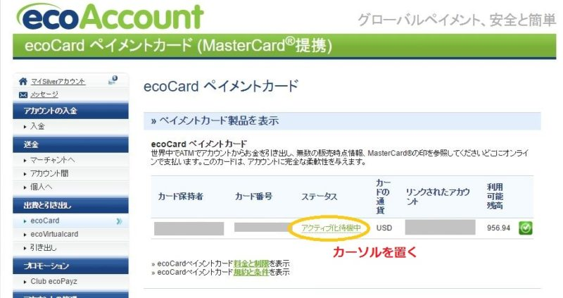 ecocardactivate1